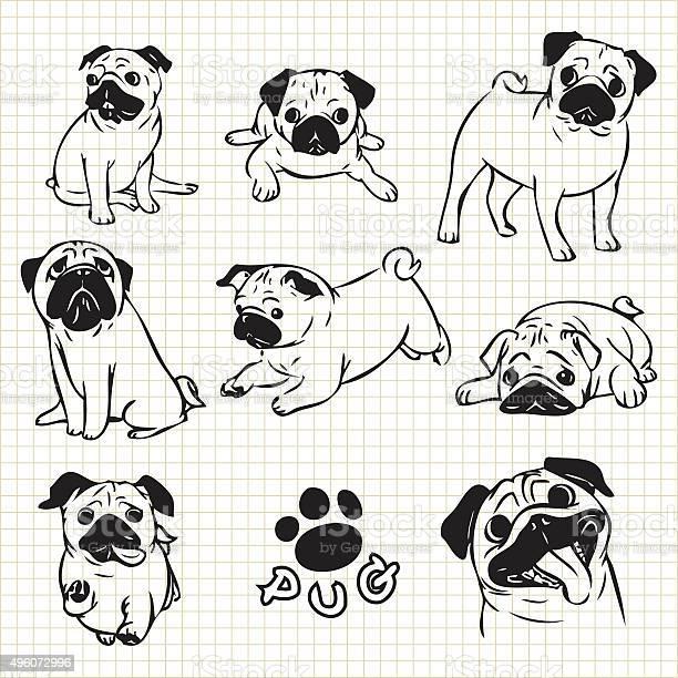 Pug dog vector id496072996?b=1&k=6&m=496072996&s=612x612&h=n8jsiuyb6pgfsw9a34vcu5pwoef9tz54r5nurwt4agq=