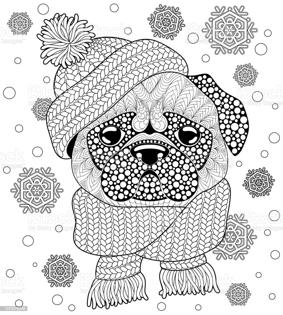 Pug dog with knitted hat and scarf. Tattoo or adult antistress coloring  page. Black and white hand drawn doodle for coloring book - Illustration . 9cd8e20e353