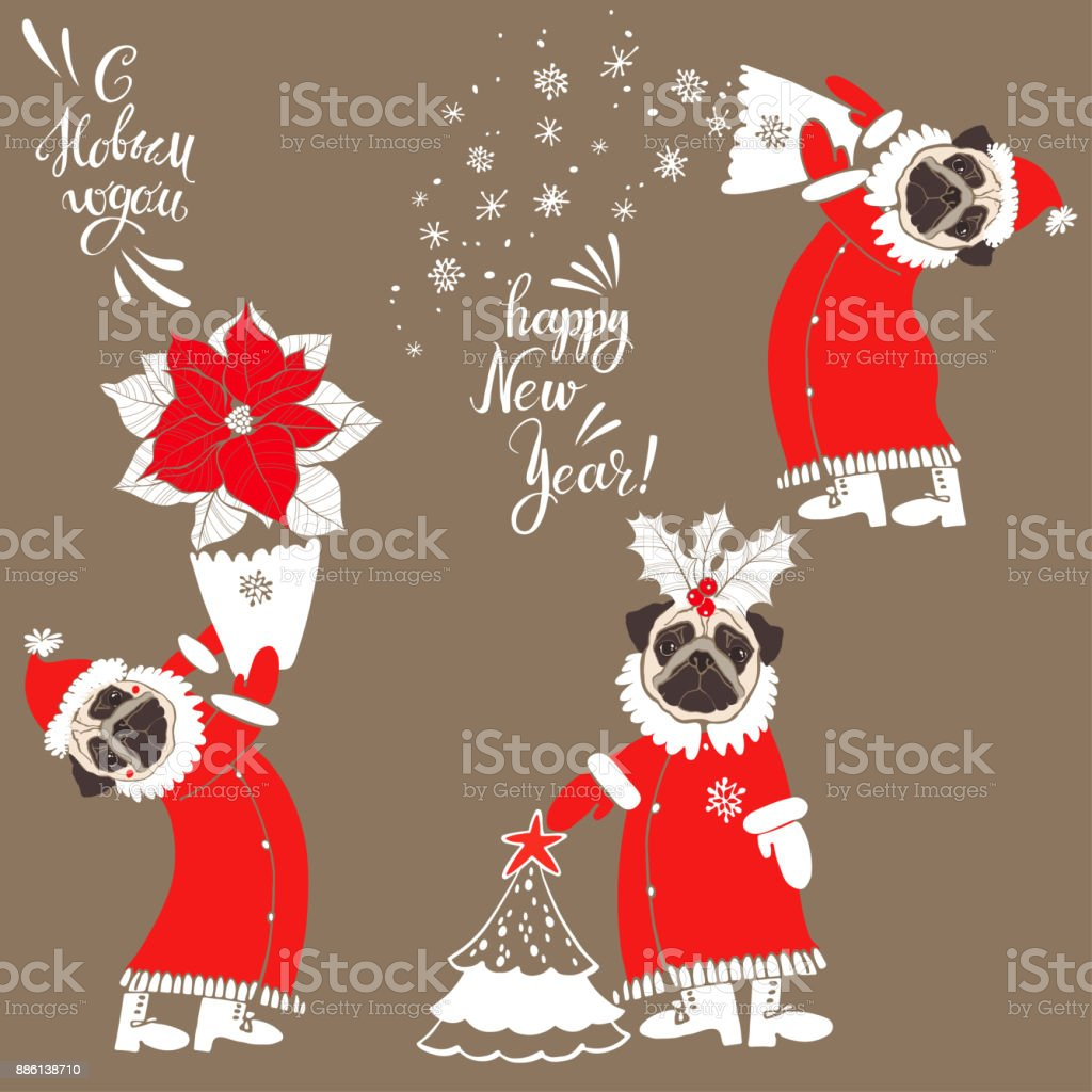 89a5f3cb84a Pug In Santa Claus Costum Wishes For The New Year In Russian And ...