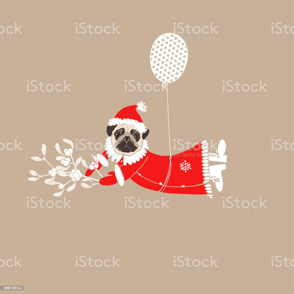 0f8d8742289 Pug in Santa Claus costume with mistletoe flying on balloon. Vector  illustration