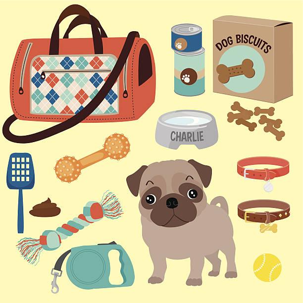 mops welpen und seine accessoires - schoßhunde stock-grafiken, -clipart, -cartoons und -symbole