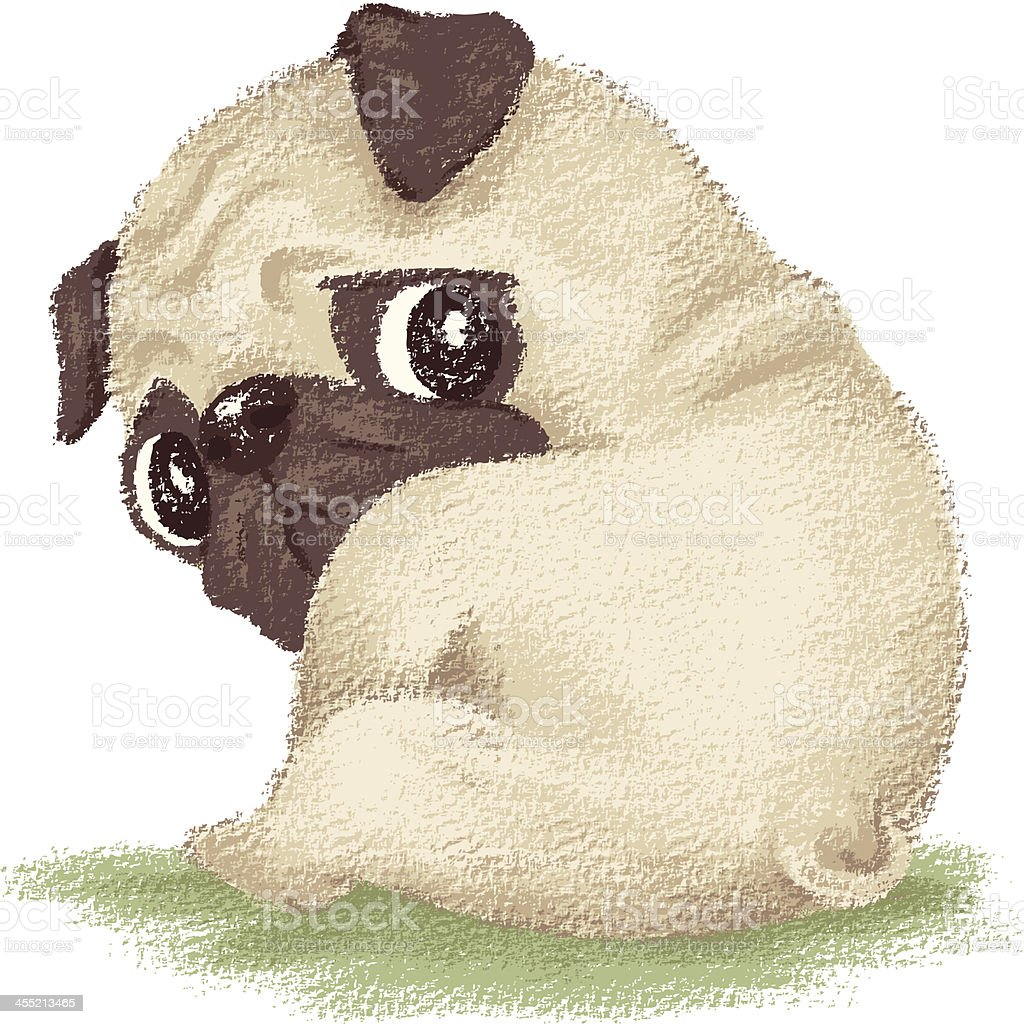 Pug sitting vector art illustration