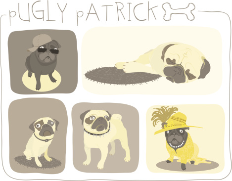 Pugly Patrick Collection