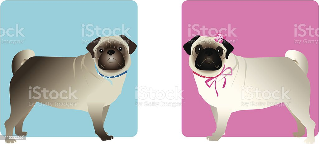 Pugs: boy and girl vector art illustration