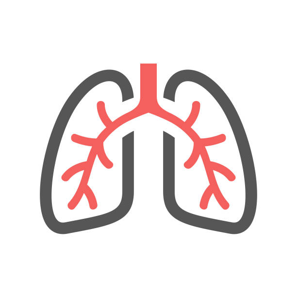 Pulmonology Icon Pulmonology Icon - Glyph lung stock illustrations
