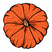 Pumpkin bright orange decorative sketch doodle isolated vector illustration for decoration and design