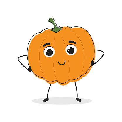 Pumpkin. Cartoon drawing style.