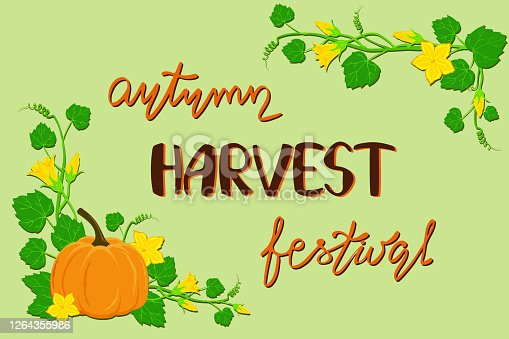 istock Pumpkin festival poster. Nice pumpkin plant with flowers and lettering 1264355986