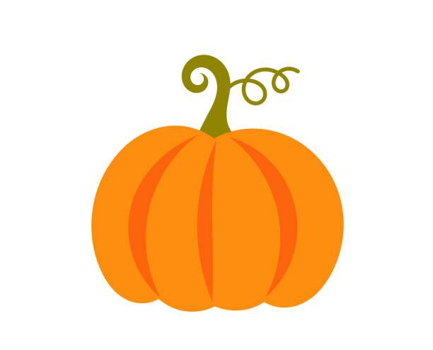 Pumpkin icon. Pumpkin icon. Vector illustration. pumpkin stock illustrations