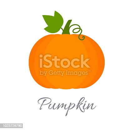 Vector illustration of pumpkin icon in flat style with title, isolated on white background