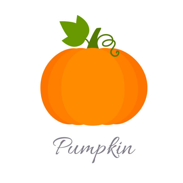 Pumpkin icon with title Vector illustration of pumpkin icon in flat style with title, isolated on white background pumpkin stock illustrations