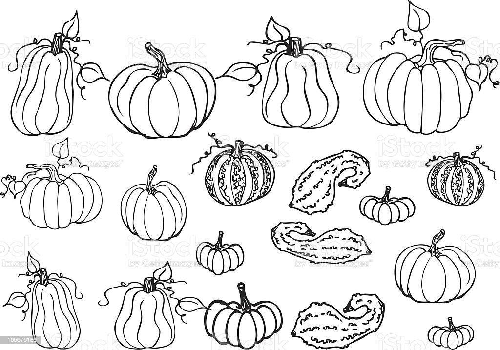 Pumpkin - Line Art royalty-free pumpkin line art stock vector art & more images of autumn