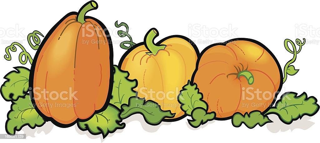 royalty free pumpkin patch clip art vector images illustrations rh istockphoto com pumpkin patch clip art images free pumpkin patch clipart png
