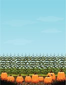 A pumpkin patch with a large amount of copyspace.