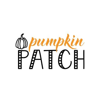 Pumpkin patch. Vector illustration. Lettering. Ink illustration. t-shirt design.
