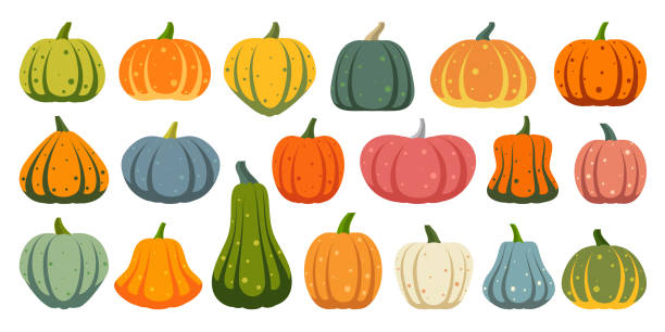 Pumpkin simple flat color icons vector set Pumpkin flat icons set. Sign kit of Halloween. Thanksgiving pictogram collection farm harvest, close-up squash, vegetable. Simple gourd cartoon color icon symbol isolated on white. Vector Illustration squash vegetable stock illustrations