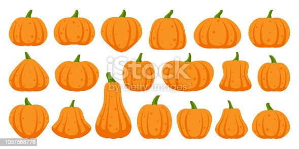 Pumpkin flat icons set. Sign kit of Halloween. Thanksgiving pictogram collection farm harvest, close-up squash, vegetable. Simple gourd cartoon color icon symbol isolated on white. Vector Illustration