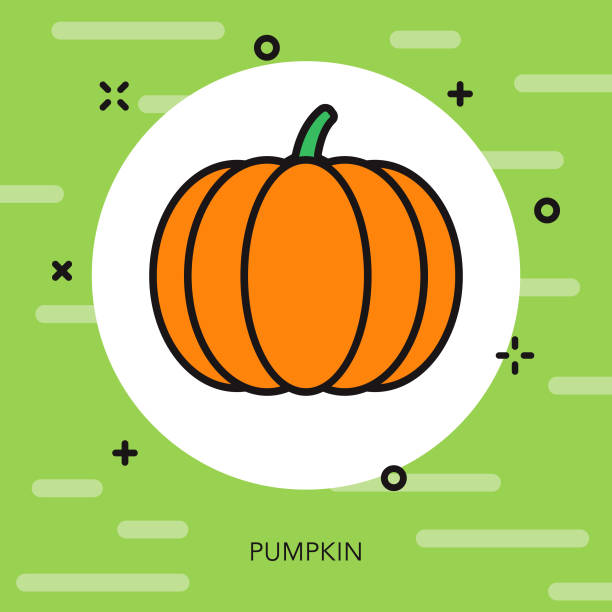 pumpkin thin line vegetable icon - thin line fonts stock illustrations