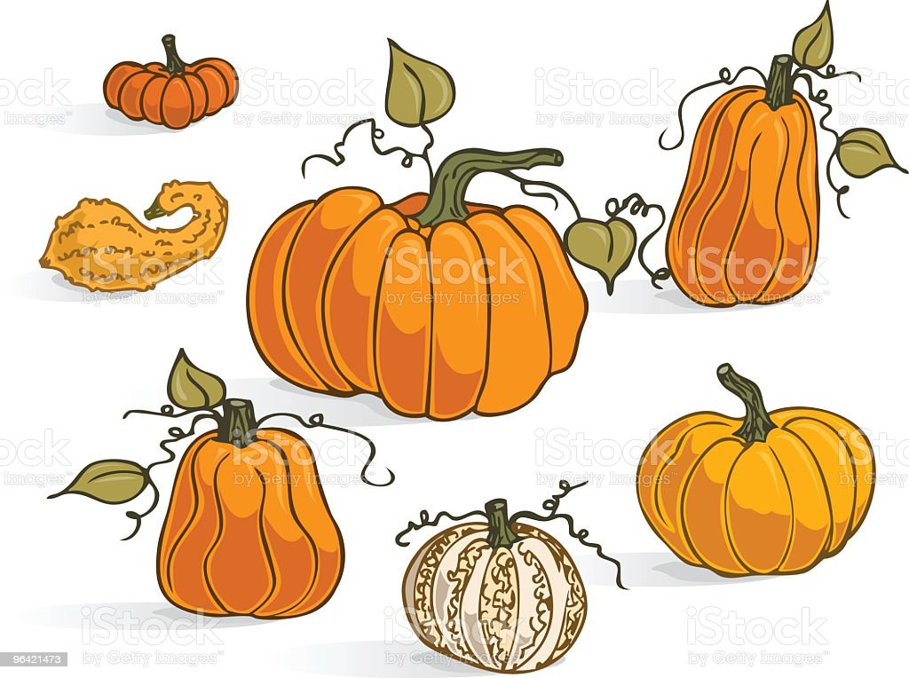 Pumpkin Types royalty-free stock vector art