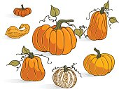 Pumpkin types is part of a series of pumpkins, squash, and gourds.  These are useful as Halloween decorations, as clip-art, and on websites.  These pumpkin are all sizes, shapes, and colors.