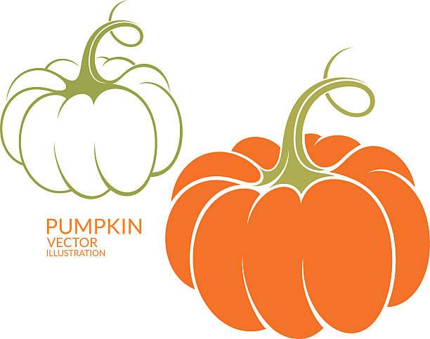 Pumpkin (EPS) + ZIP - alternate file (CDR)  squash vegetable stock illustrations