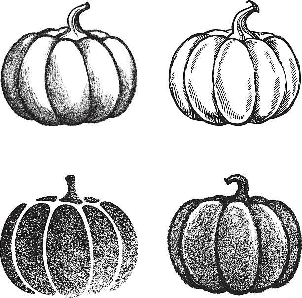 ilustrações, clipart, desenhos animados e ícones de abóbora - texturas desgastadas