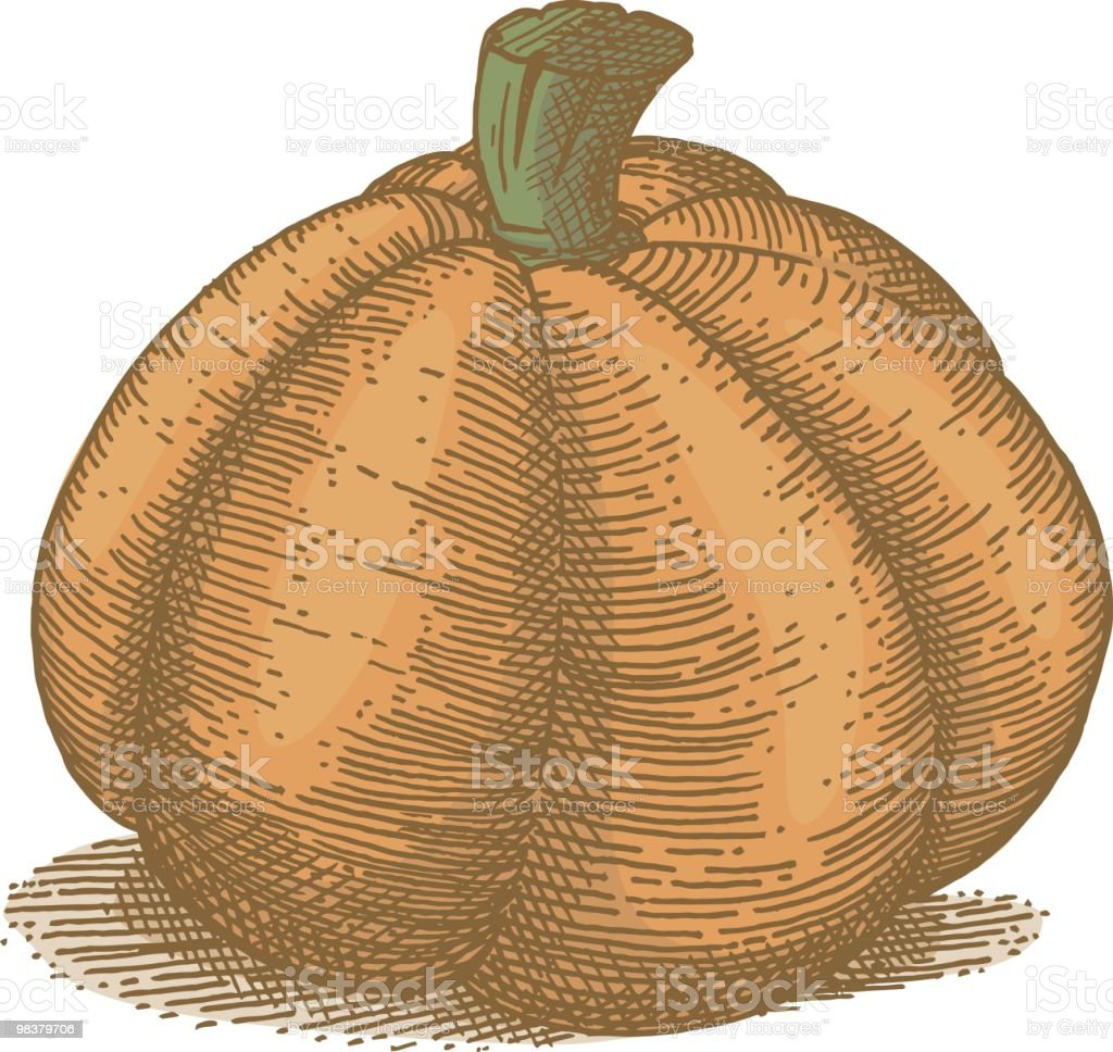Pumpkin royalty-free pumpkin stock vector art & more images of color image