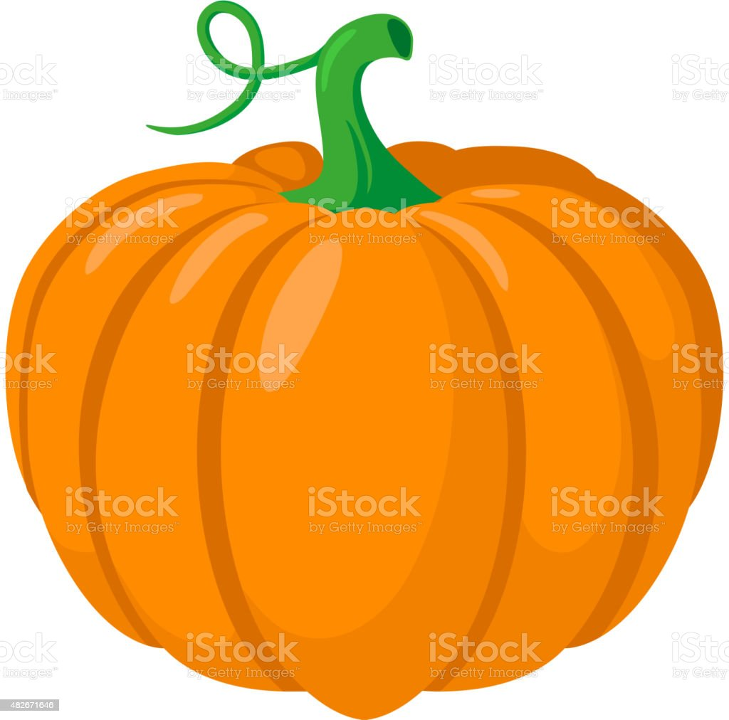 Pumpkin vegetable. vector art illustration