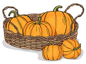 Bright pumpkins in wicker basket on white background. Autumn harvest. Colorful vector illustration in sketch style.
