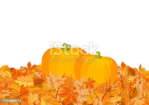 Pumpkins on autumn leaves flat vector illustration. Yellow oak, chestnut tree foliage. Orange gourds, vegetable harvest on fallen leaves decorative postcard, Halloween poster design element