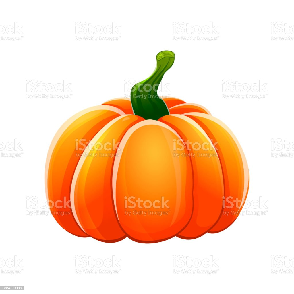 Pumpkins set royalty-free pumpkins set stock vector art & more images of agriculture