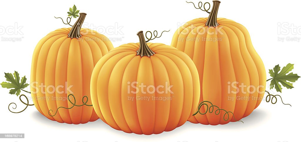 Pumpkins royalty-free stock vector art