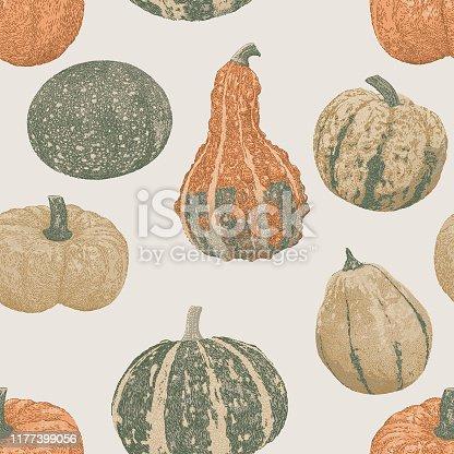 istock Pupkins Vegetables Seamless Repeat 1177399056