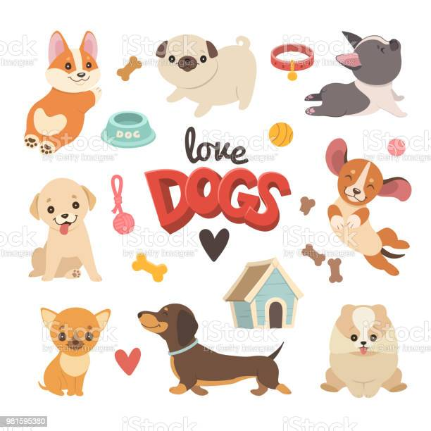 Puppies collection vector id981595380?b=1&k=6&m=981595380&s=612x612&h=flqivtvtn5vibqiguxfyyhpjs sdbyinibmnp8u3lyi=