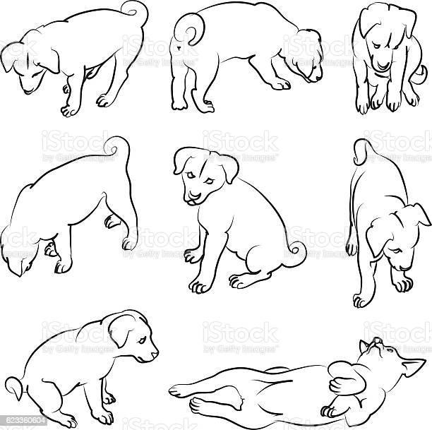 Puppies vector id623360604?b=1&k=6&m=623360604&s=612x612&h=3dms5ngkj0cmqojf1j2zedubppj8gs3ocvihyiuxt4y=