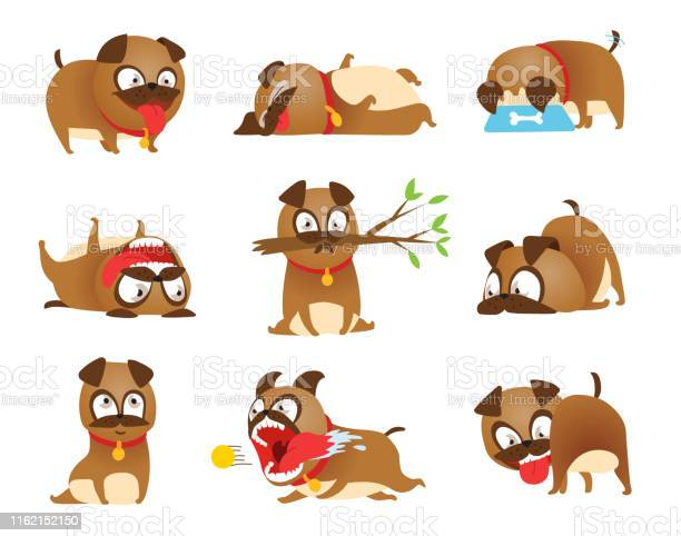Puppy activity set cartoon dog set dogs tricks icons and action vector id1162152150?b=1&k=6&m=1162152150&s=612x612&h=elsvbnofbu8o1hq4a8bk8vjm1usjvcl7eahqdrwvei0=