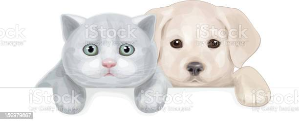 Puppy and kitten hiding by blank isolated vector id156979867?b=1&k=6&m=156979867&s=612x612&h=yaqixita6jnjtylygfdp722wq5lju5q1i 2pgee2sn8=