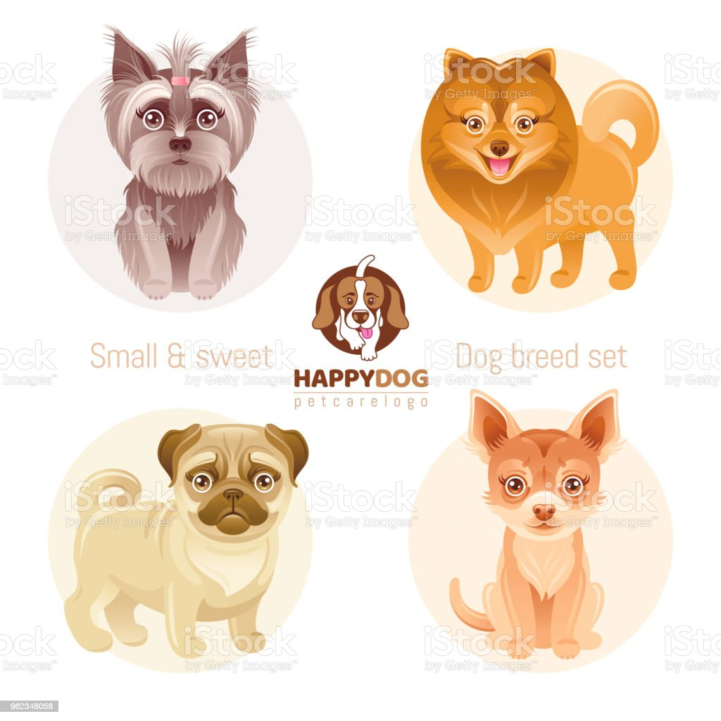 Puppy Dog Breeds Icon Set Yorkshire Terrier Pomeranian Spitz Chihuahua Pug Breed Animal Cartoon Vintage Vector Illustration Isolated White Background Text Lettering Pet Care Symbol Stock Illustration Download Image Now Istock