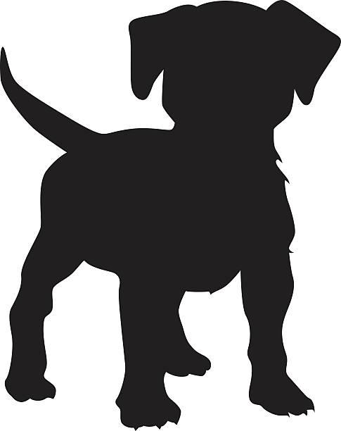 bildbanksillustrationer, clip art samt tecknat material och ikoner med puppy dog vector silhouette - valp