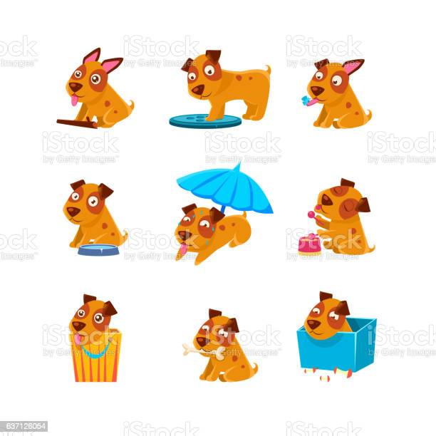 Puppy everyday activities collection vector id637126054?b=1&k=6&m=637126054&s=612x612&h=so4huv8j5yor7ju0x5wd ny3pq8yg2jgvrsilhb8xjc=
