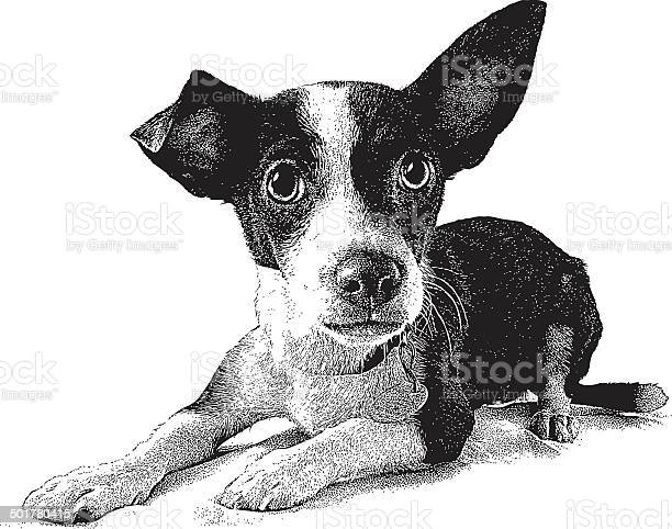Puppy head isolated on white vector id501780415?b=1&k=6&m=501780415&s=612x612&h=wcgpjetzt p1cyfald1fw3trhk zfcxls2bndvvil0e=
