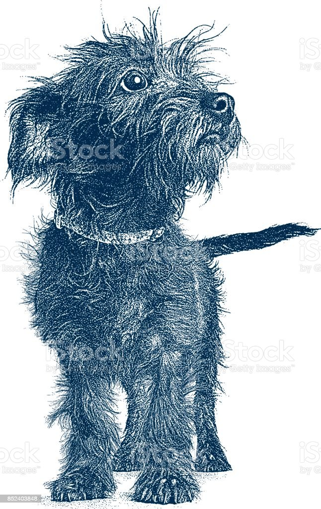 Puppy waiting to be adopted. Terrier Dachshund mixed-breed dog. vector art illustration