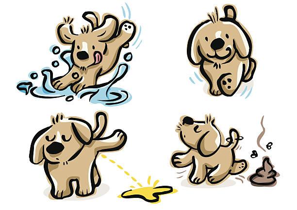 Pie de cachorro, haciendo pee, poop y Salto en un charco - ilustración de arte vectorial