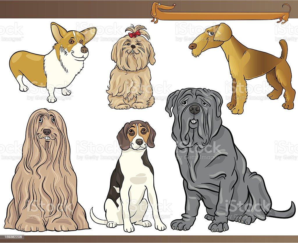purebred dogs cartoon illustration set vector art illustration