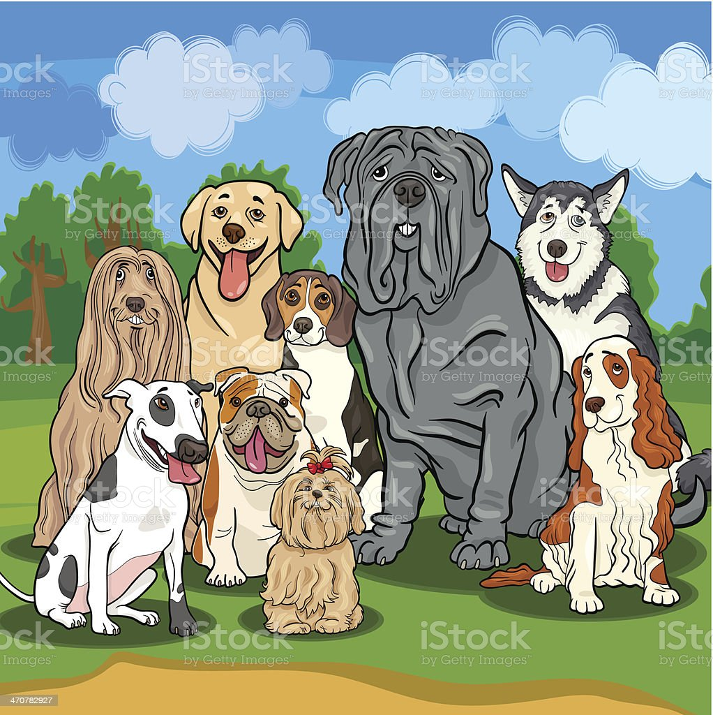 purebred dogs cartoon illustration vector art illustration
