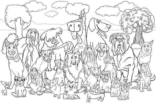 purebred dogs coloring book vector art illustration