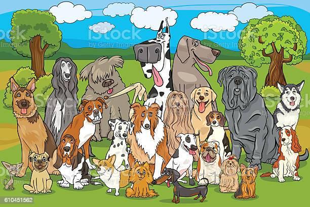 Purebred dogs group cartoon vector id610451562?b=1&k=6&m=610451562&s=612x612&h=flteykqn2cddn6xa aa4npe2lgecm5bgh7l5voykhsu=