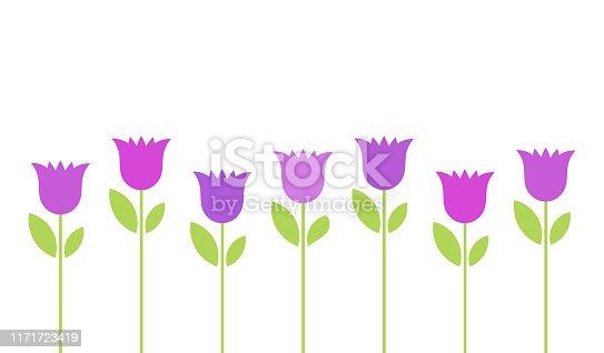 Purple bellflowers flowers background. Vector illustration