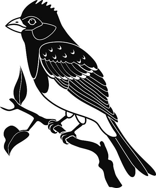 Royalty Free Purple Finch Clip Art, Vector Images ...