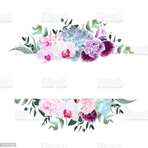 Purple orchid pink rose hydrangea campanulacarnation succul vector id924379162?b=1&k=6&m=924379162&s=612x612&h=yca4atcaeque5b0qy8qcqid5tumz6jujvfrqslqadb8=
